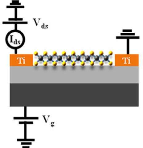 High photosensitivity 2D-few-layered molybdenum diselenide phototransistors