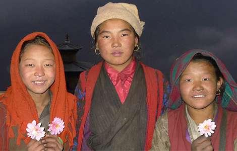 Himalayan Viagra fuels caterpillar fungus gold rush