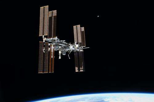 How does space travel affect organ development?
