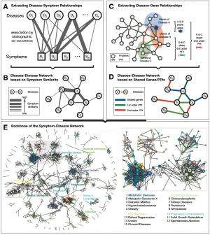human symptoms disease network
