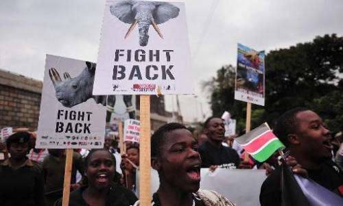 Hundreds of Kenyans join conservationists and activists for a march demanding action to stop the soaring rhino and elephant poac