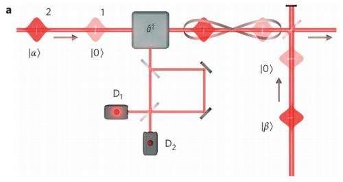 hybrid entanglement