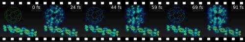First real time movies of the light-to-current conversion in an organic solar cell
