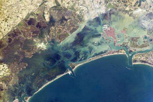 Image: Venice Lagoon from orbit