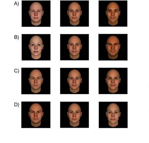 Impressions shaped by facial appearance foster biased decisions