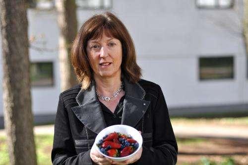 Ingredients in chocolate, tea and berries could guard against diabetes