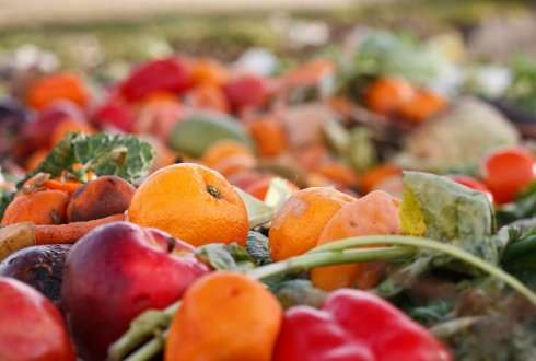 Integrated approach vital to reduction food waste and loss