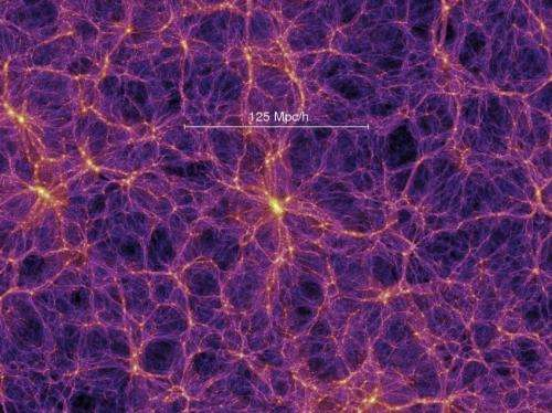 It's filamentary: How galaxies evolve in the cosmic web