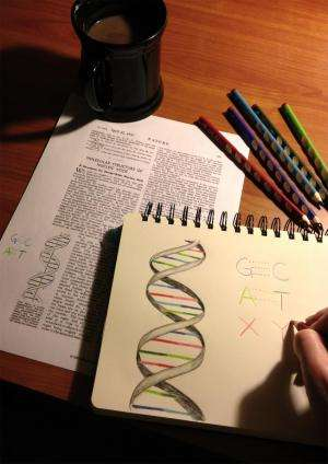 Scientists create first living organism that transmits added letters in DNA 'alphabet'