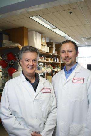 Joslin discovery may hold clues to treatments that slow aging