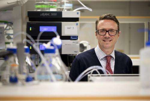 Kidney cancer reveals its weak link