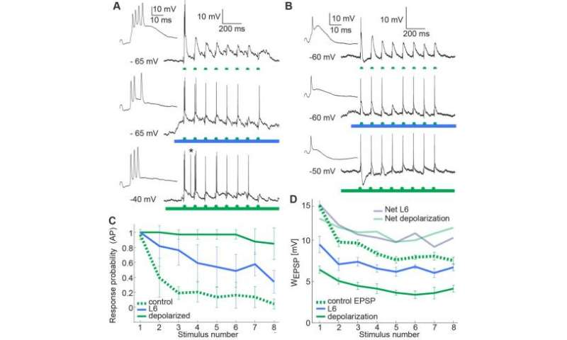 L6 activity enhances the relay of frequency stimuli by reducing supra- and subthreshold adaptation