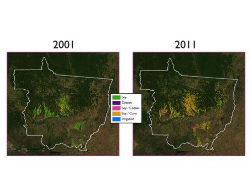 Land quality and deforestation in Mato Grosso, Brazil