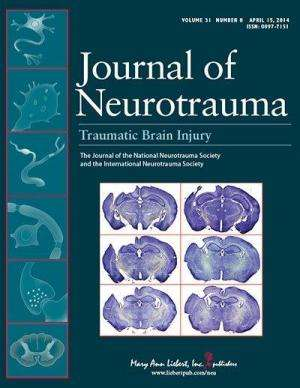 Long-term effects of battle-related 'blast plus impact' concussive TBI in US military
