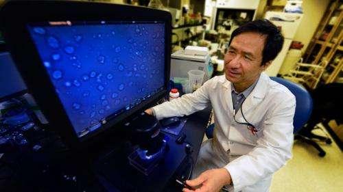 Low levels of oxgen, nitric oxide worsen sickle cell disease