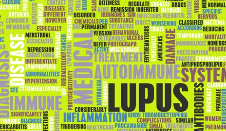 Malaria drug combo could help prevent pregnancy complications in lupus patients