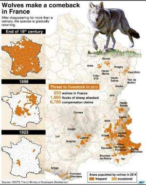 Map locating wolf populations in France and statistics about the impact on livestock