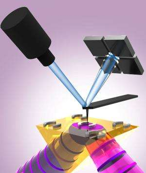 Measuring absorption maps and spectra of plasmonic resonators with nanoscale resolution