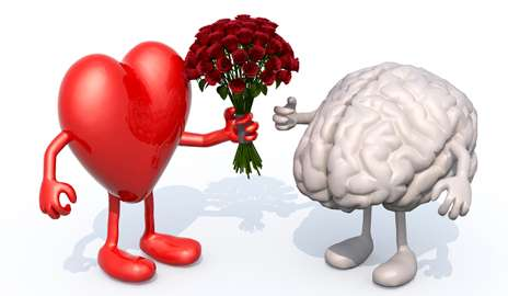 Meditation helps pinpoint neurological differences between two types of love