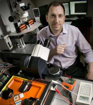 Microchip-like technology allows single-cell analysis