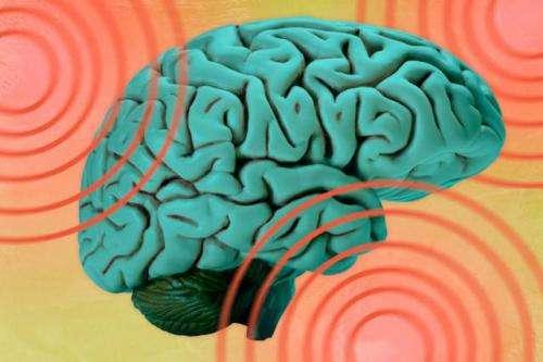 Modeling shockwaves through the brain
