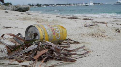 More management needed for Rottnest marine debris