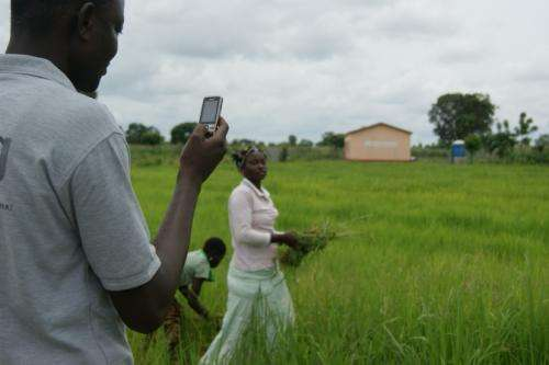 NASA Goddard to bring satellite data to African agriculture