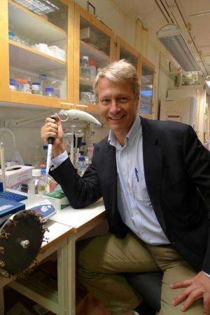 New discovery solves problem of anti-inflammatory substance