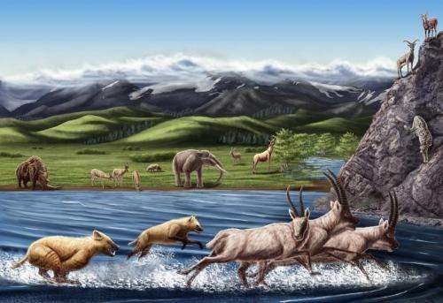 New paper suggests High Tibet was cradle of evolution for cold-adapted mammals