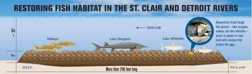 New spawning reefs to boost native fish in St. Clair River