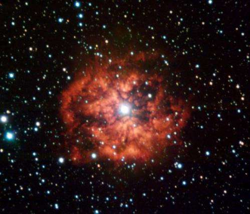 New supernova likely arose from massive Wolf-Rayet star