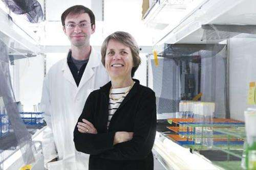 Ocean microbes display a hidden talent: releasing countless tiny lipid-filled sacs