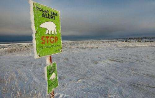 One of many polar bear alert warning signs posted inside the town of Churchill, Manitoba, Canada