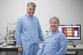 'Parent' cells reset the cell division clock