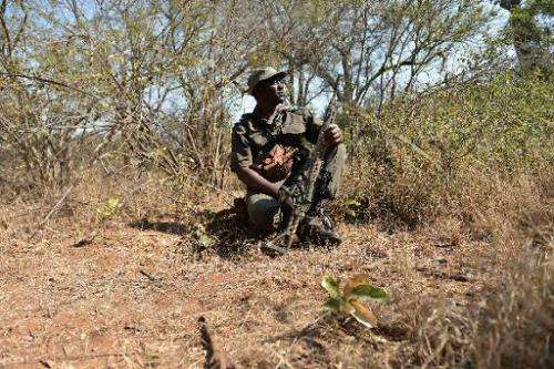 Park ranger Stephen Midzi patrols a section of Kruger National Park, in northern South Africa, scouting for possible poachers on