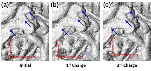 Peering deep inside nongraphitic anodes with synchrotron microtomography