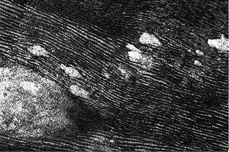 Plastic, 'wrong-way' dunes arise on Saturn moon Titan