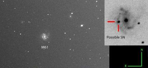 Possible bright supernova lights up spiral galaxy M61