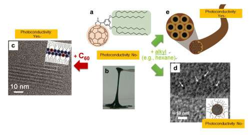 Precision control of the timing, structure and functions in molecular self-assembly