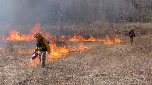 Prescribed burning strategy does not protect lives and homes