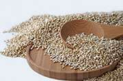 Quinoa may be safe grain for people with celiac disease