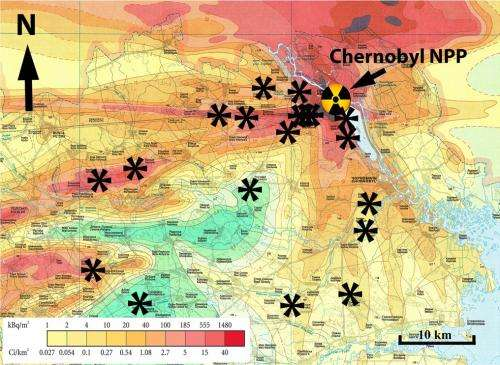 Radiation damage at the root of Chernobyl\'s ecosystems