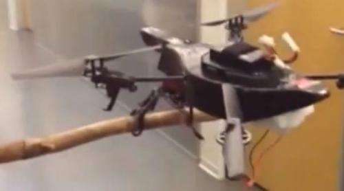 Falcon-inspired drone has legs, will perch and land