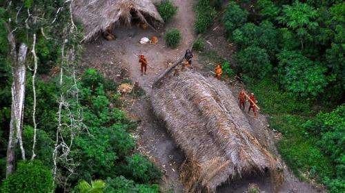 Remote surveillance may increase chance of survival for 'uncontacted' Brazilian tribes
