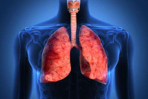 Researchers' new test for cystic fibrosis may lead to more treatments