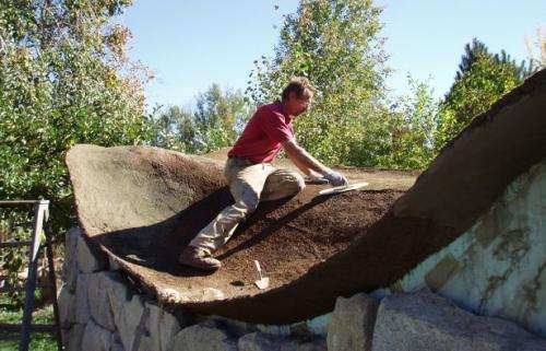 Research spawns eco-friendly cement substitute