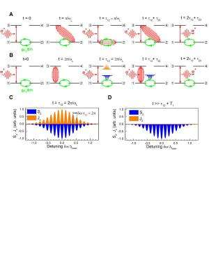 Schematic presentation of the main mechanisms responsible for magnetic-field-induced stimulated photon echoes