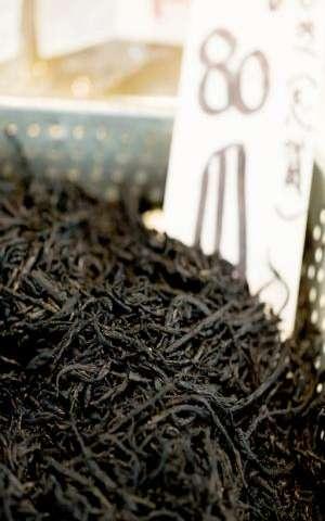 Seasonal seaweed highlights chemical diversity