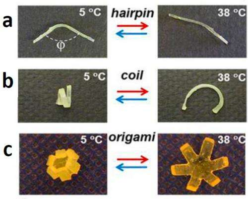 Shapeshifting plastics could revolutionize microrobotics and minimally invasive surgery