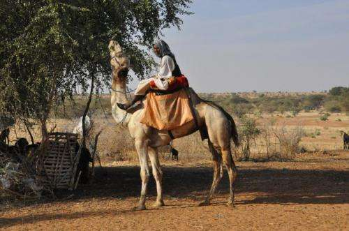 Shrinking resource margins in Sahel region of Africa
